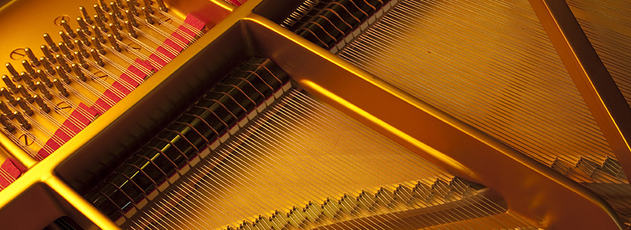 Le Piano Steinway 'D' - Grand Concert